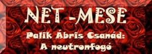 Net-Mese